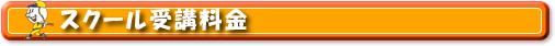 スクール料金案内 バッティングセンターニュー泉大津 バッティングセンターニュー富田林 大阪府富田林市 泉大津市 バッティングフォーム連続写真 ソフトボール 硬式 軟式 トスマシンス 野球