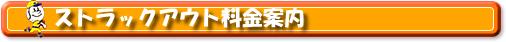ストラックアウト バッティングセンターニュー泉大津 バッティングセンターニュー富田林 大阪府富田林市 泉大津市 バッティングフォーム連続写真 ソフトボール 硬式 軟式 トスマシンス 野球