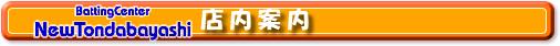 バッティングセンターニュー泉大津 バッティングセンターニュー富田林 大阪府富田林市 泉大津市 バッティングフォーム連続写真 ソフトボール 硬式 軟式 トスマシンス 野球